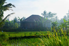 Javanese house. Picture was taken in Central Java, Indonesia royalty free stock photo