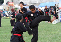 Javanese martial art Stock Image