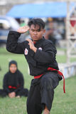 Javanese martial art Stock Images