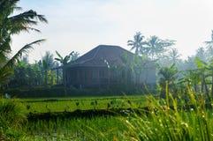 Javanesehus Royaltyfri Foto