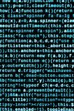 Javascript functions, variables, objects. Monitor closeup of function source code. IT specialist workplace. Big data and Internet of things trend. HTML website royalty free stock image
