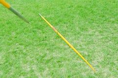 Javelin на зеленой траве Стоковое Изображение RF