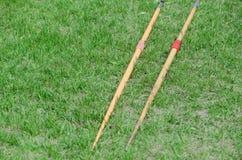Javelin на зеленой траве Стоковая Фотография RF