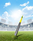 Javelin In Stadium And Green Turf Royalty Free Stock Images