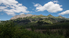 Javorova Valley in Tatry Mountains in Slovakia Stock Photos