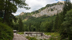 Javorova Valley in Tatry Mountains in Slovakia Royalty Free Stock Photography