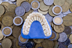 Jaw. Model of the jaw against the backdrop of coins stock images