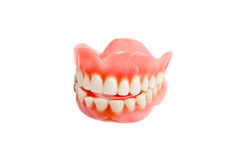 Jaw smile from plastic teeth. Isolated jaw making smile with healthy fake teeth stock images