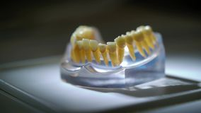 Jaw in dental clinic. Jaw tooth in dental clinic stock footage