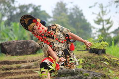 Jawańczyka Cirebon taniec Fotografia Stock