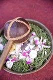Jawajski ślubny korowód Zdjęcie Stock