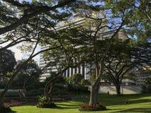 Jawnego parka los angeles Estancia w Caracas, Wenezuela obrazy stock