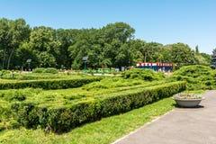Jawnego parka scena Na letnim dniu Zdjęcie Royalty Free