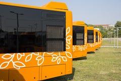 Jawnego transportu autobusów nowi plecy Obraz Royalty Free