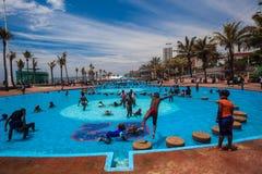 Jawni Pływackich basenów wakacje Zdjęcie Royalty Free