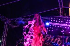 Jawny festiwal muzyki Zdjęcia Stock