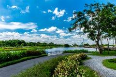 Jawny ogród w Bangkok Tajlandia zdjęcia stock
