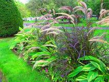 Jawny ogród w Boston Obraz Stock