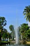 Jawny park. Zdjęcia Royalty Free