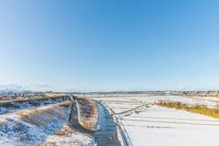Jawny park z białym śniegiem Zdjęcia Royalty Free