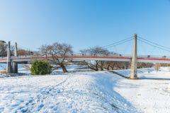 Jawny park z białym śniegiem fotografia stock