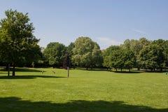 Jawny park z zielonej trawy polem Zdjęcia Stock