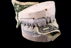 Jaws hold banknote. Isolated on black Royalty Free Stock Image