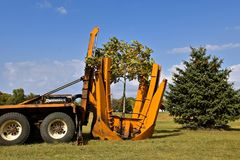 Jaws for transplanting a tree. The jaws of a mounted machine for transplanting a machine are being lifted after a successful sapling transplant Royalty Free Stock Images