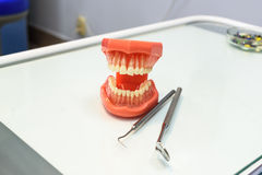 The jaws and tools dentist Royalty Free Stock Photo