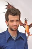 Jay Baruchel Stock Photography