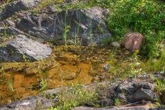 Jay Cooke State Park is op het St Louis River zuiden van Duluth i royalty-vrije stock afbeeldingen