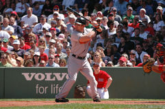 Jay Gibbons, Baltimore Orioles. Baltimore Orioles OF Jay Gibbons Stock Photo
