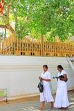 Jaya Sri Maha Bodhi, всемирное наследие ЮНЕСКО Шри-Ланки Стоковое Изображение