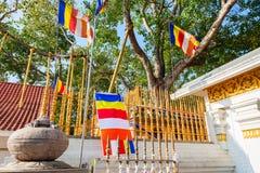 Jaya Sri Maha Bodhi Obrazy Stock