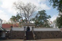 Jaya Sri Maha Bodhi Imágenes de archivo libres de regalías