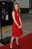 Jayma Mays Photo stock