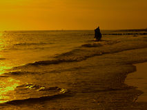 jazda konno plażowa Obrazy Royalty Free