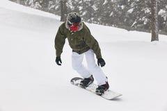 Jazda na snowboardzie na śnieżnym lasu krajobrazie sport na śnieg na zimę Obraz Stock