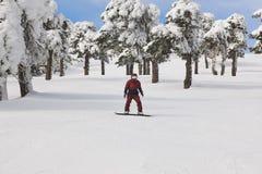 Jazda na snowboardzie na lasowym narciarskim skłonie Biały zimy góry landsc Fotografia Royalty Free