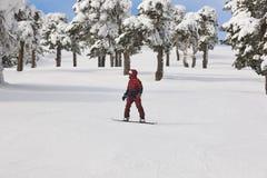 Jazda na snowboardzie na lasowym narciarskim skłonie Biały zimy góry landsc Zdjęcie Royalty Free