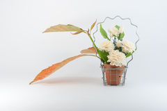 Jazmín en cesta y Autumn Leaf Fotografía de archivo