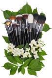 Jazmín Sistema de cepillos del maquillaje Aislado Fondo blanco Imagenes de archivo