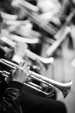 jazz Fotografia Royalty Free