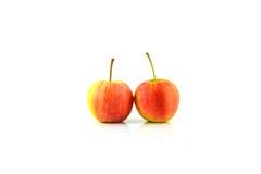 Jazz apples Stock Photography
