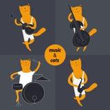 Jazz band cat musician. Set, flat design Stock Image