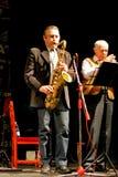 Jazz Concert Stock Images