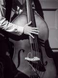 Jazz da rua Fotografia de Stock