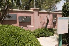 Jazz Garden på Florida botaniska trädgårdar USA Fotografering för Bildbyråer