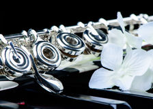 Jazz music instrument flute close up with flower. Isolated on black background Royalty Free Stock Photo