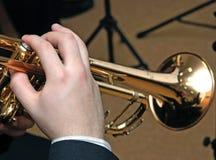 Jazz musician Stock Photos